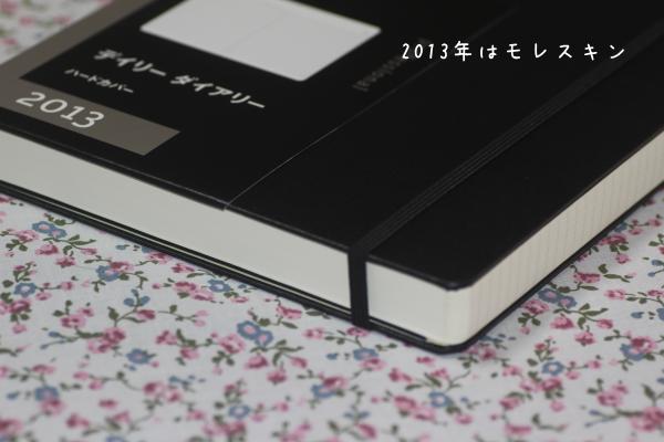2013年手帳