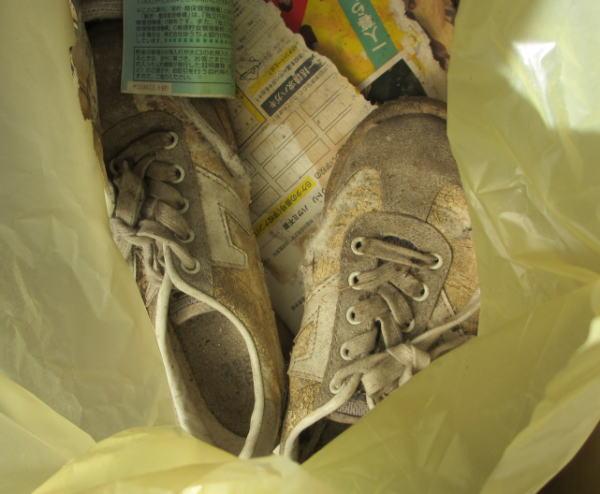 義母の運動靴