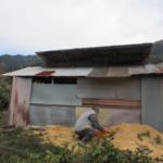 畑の小屋を解体する(その2)