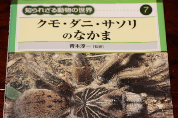 クモ・ダニ・サソリのなかま (知られざる動物の世界)