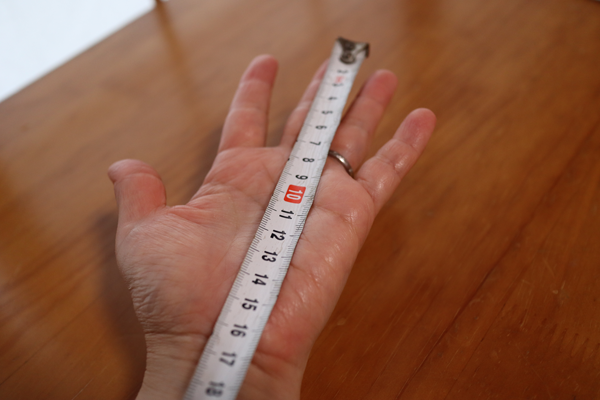 中指から16センチ