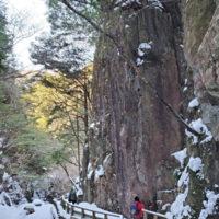 加子母氷瀑ツアー